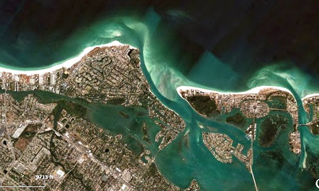 Siesta Key Environmental Defense Fund